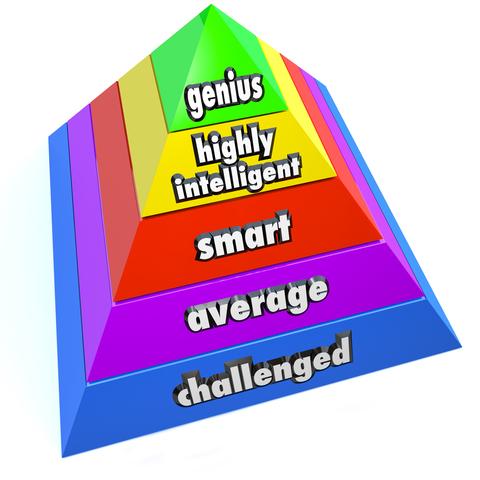 Multiple intelligences or one?