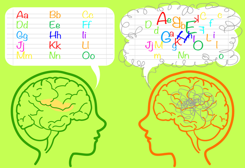 Dyslexia and the Brain